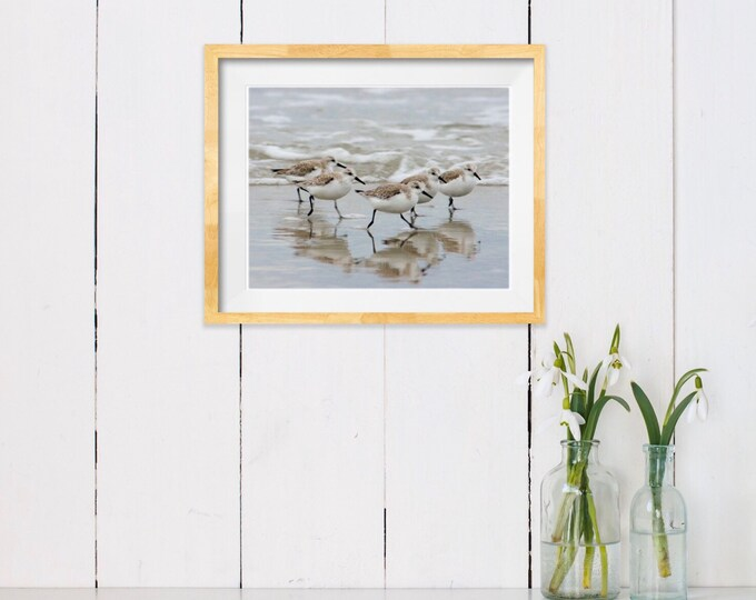 Featured listing image: Sandpipers in the Surf