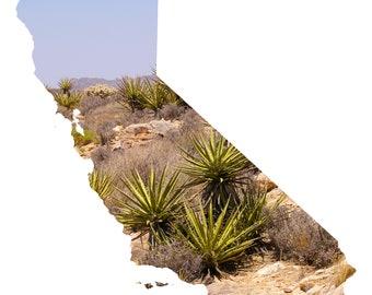 CA Shape - Joshua Tree Cacti
