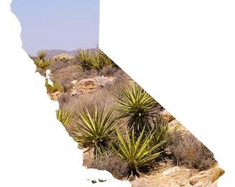 CA Map Art - Joshua Tree Cacti