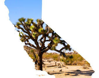 CA Shape - Joshua Tree