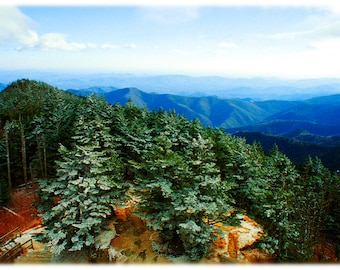 View from Mount Mitchell