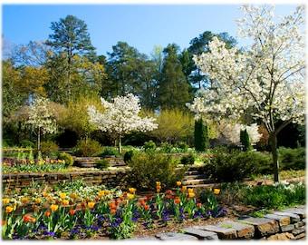 Springtime at Duke Gardens