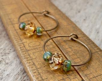 Titanium Hoop Earrings - Hoop Earrings - Hypoallergenic Hoop Earrings - Earrings for Sensitive Ears - Gift for Friend