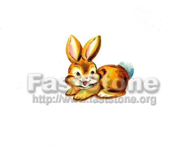Downloadable, vintage baby bunny rabbit, digital file JPG and PNG tif Adobe pdf