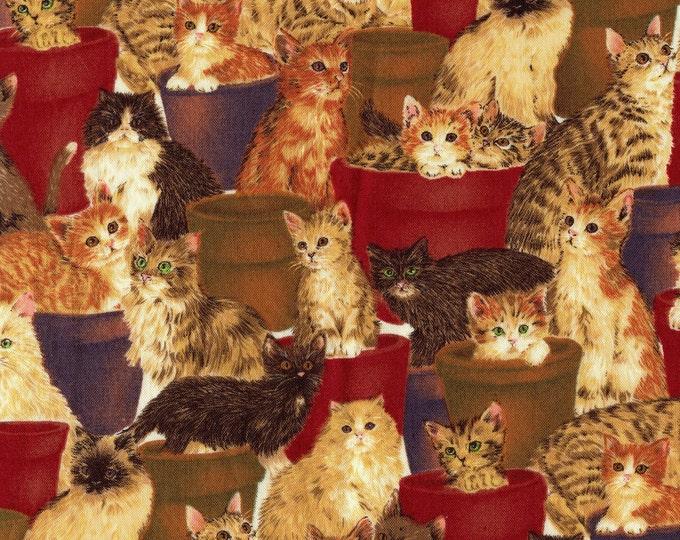 Cute cats fabric, cats in flower pots, Hoffman fabric, half yard