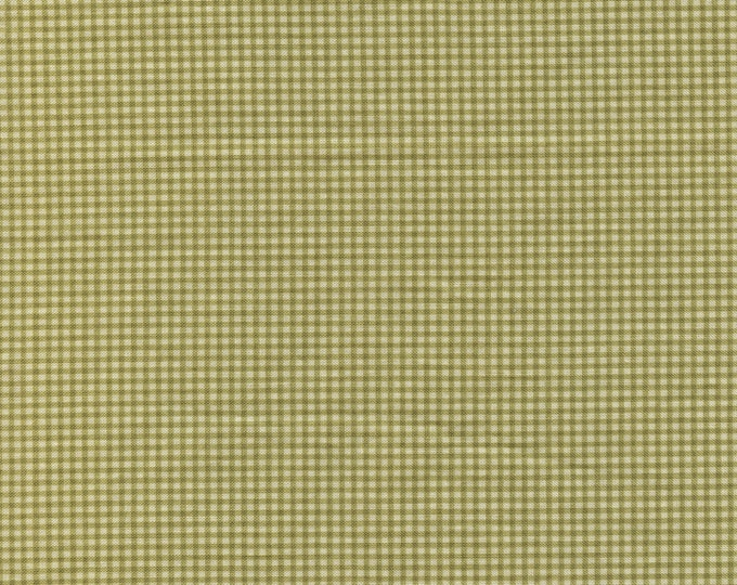 Basic check fabric, SSI quilting cotton fabric by Robyn Pandolph