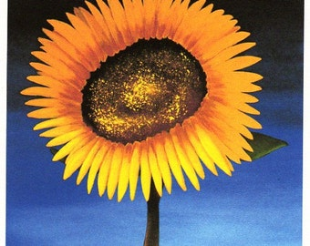 Yellow Sunflower Folk Art PRINT of Todd Young painting SUNFLOWER