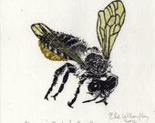 Leafcutter Bee, Megachile Relativa Linocut, Lino Block Print Bee Biodiversity Collection, Leafcutter Bee