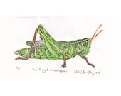 Red-legged Grasshopper Mini Linocut