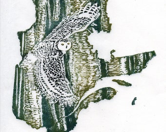 Quebec, Snowy Owl and Yellow Birch linocut - Lino Block Print Maps of Canadian Provinces & Territories with Symbols, Quebec Snowy Owl Birch