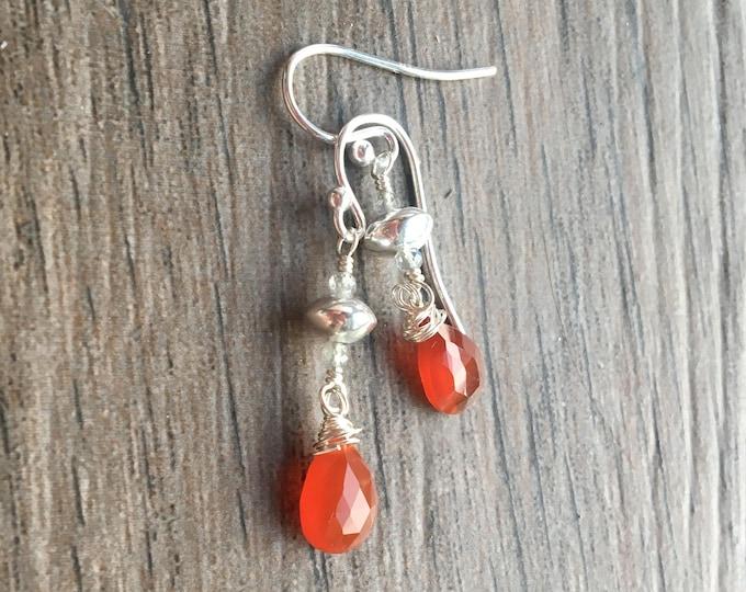 Carnelian  Labradorite and Sterling Silver Earrings Dangle