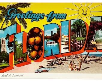 Greetings From Florida - Vintage Big Letter Postcard