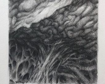 Abstracts no. 17 orginal pencil drawing