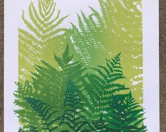 Ferns limited edition signed screenprint
