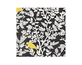 BLACK GEOMETRIC BIRDS by Timeless Treasures Fabric, 1 yard