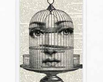 Birdcage Cavalieri print