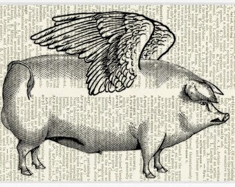 Pig with wings print