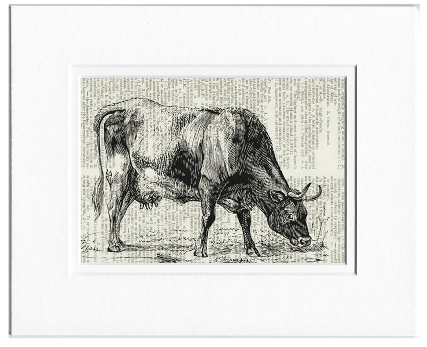 vintage cow dictionary page print