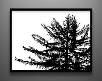 "Papercut, Koyama Spruce, 24x18"" original paper art"