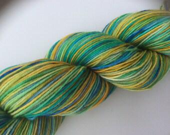 Koi-Pond - hand dyed yarn 3.5 oz 437 yds