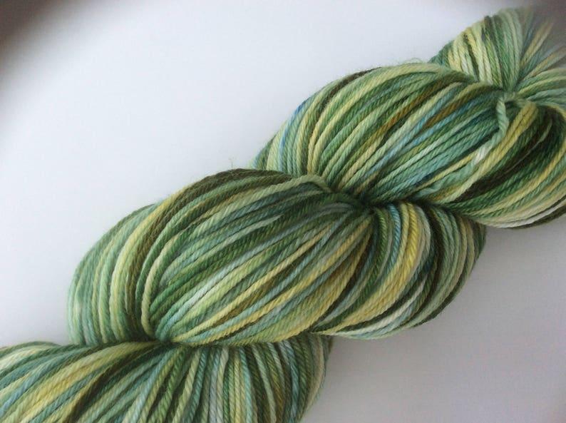 Flower-Bed hand dyed yarn 3.5 oz 437 yds