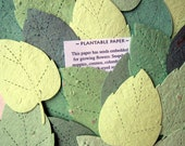 100 Seed Paper Leaves Weding Favor DIY Place Cards - Plantable Flower Seed Paper Leaf - Oak Birch Leaf Spring Garden Wedding Greenery