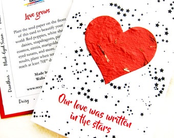 Flower Seed Paper Anniversary Card - Our Love Was Written in the Stars - Flower Seed Paper Love Card with Red Heart and Constellations