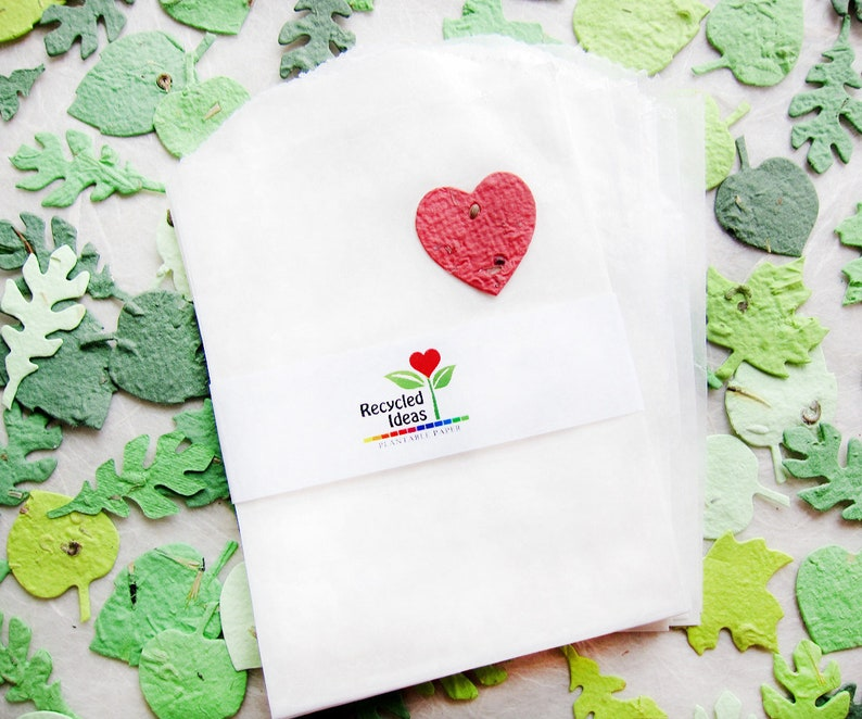 10 Add Glassine Wax Paper Bags Or Clear Cello Bags To Any Etsy