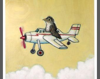 Baby Robin Stuffed into a Toy Airplane No. 15 Bird Art PRINT c-print