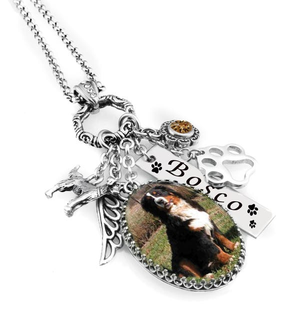 PET STUDIO Dog Pet Cat Jewelry Pewter Charm Your Choice Free Shipping Gift Box