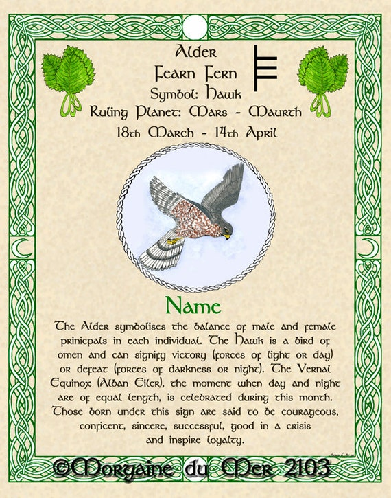 Celtic Zodiac Signs Dec To April Birthday Gift Druid Tree Lore Etsy