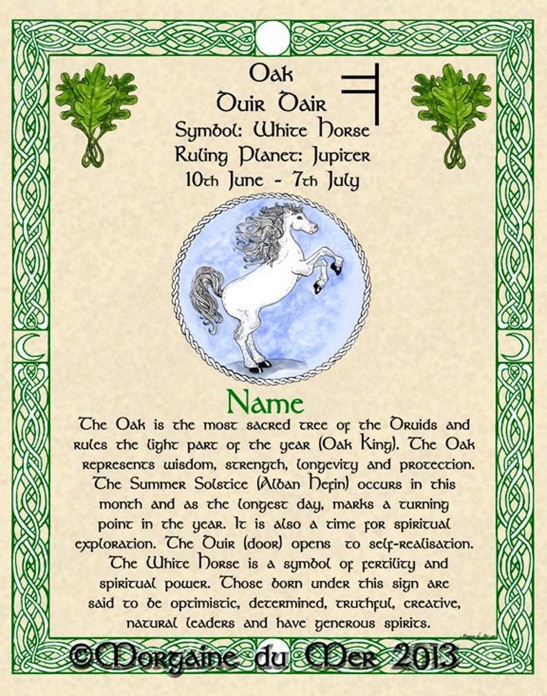 Celtic Zodiac Signs Lunar Astrology Art 8x10 Print April to August  Birthdays Sea Dragon Chalice White Horse Unicorn Druid Tree Lore Pagan