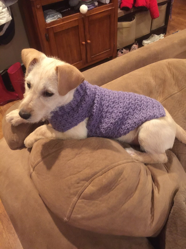 Puppy/ Dog Sweater Textured and Warm  3 Sizes Available  image 0