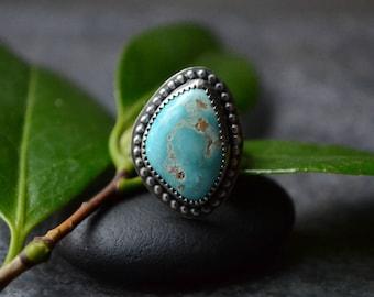 Sale: Was 149~ Carico Lake Turquoise Freeform Ring Size 6