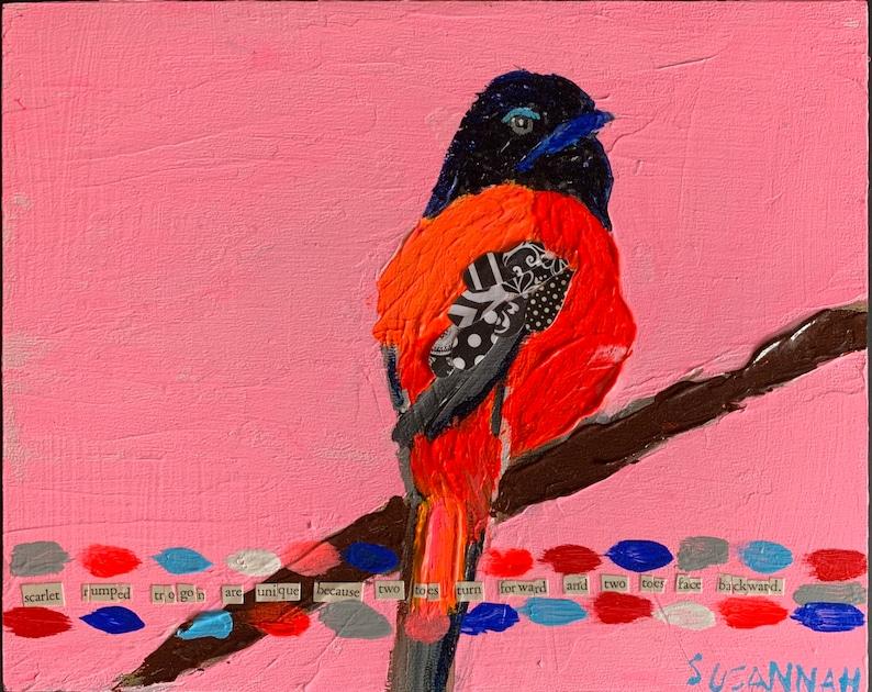 Scarlet Trumped Trogon Bird Original Acrylic Painting/Collage image 0