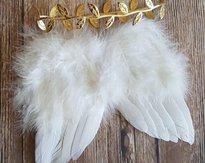 Angel & Baby Fairy Wings
