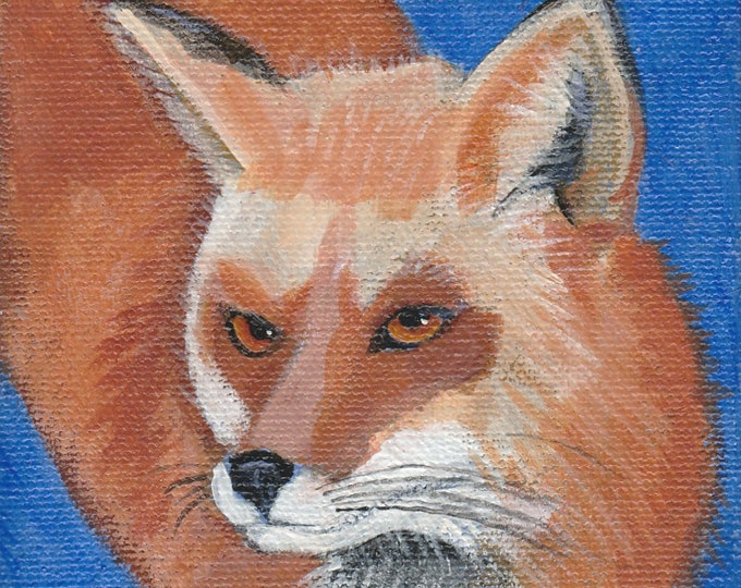 Sly Fox blank greeting card