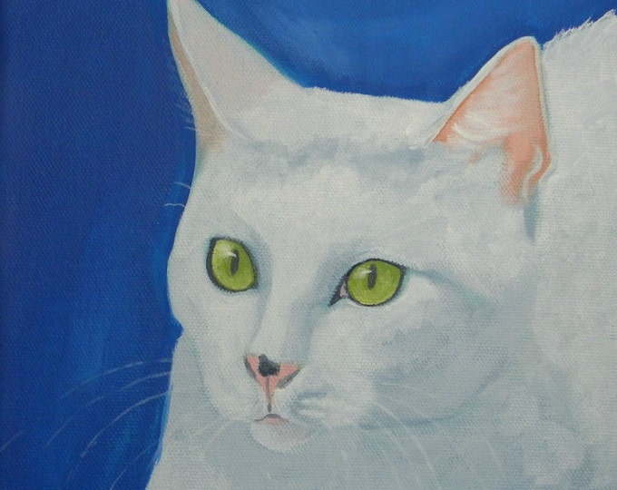 Beautiful white cat blank greeting card