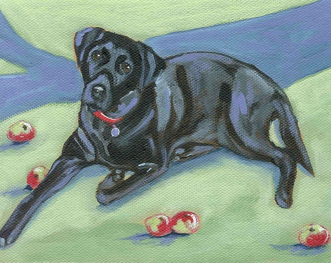 Black Lab  in the orchard greeting card
