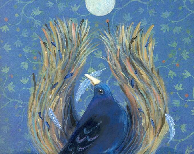 Bowerbird print (unframed)
