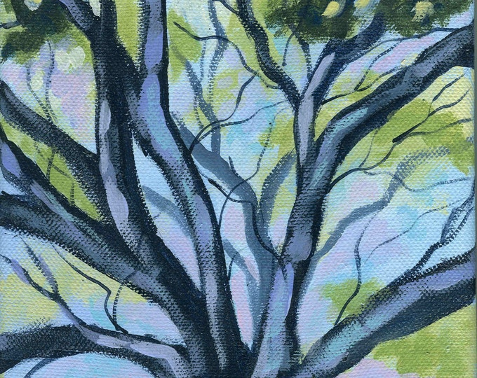 Spring Branches blank greeting card