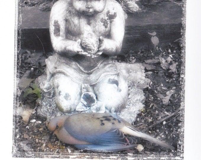 Dove and Cherub  blank sympathy card frameable