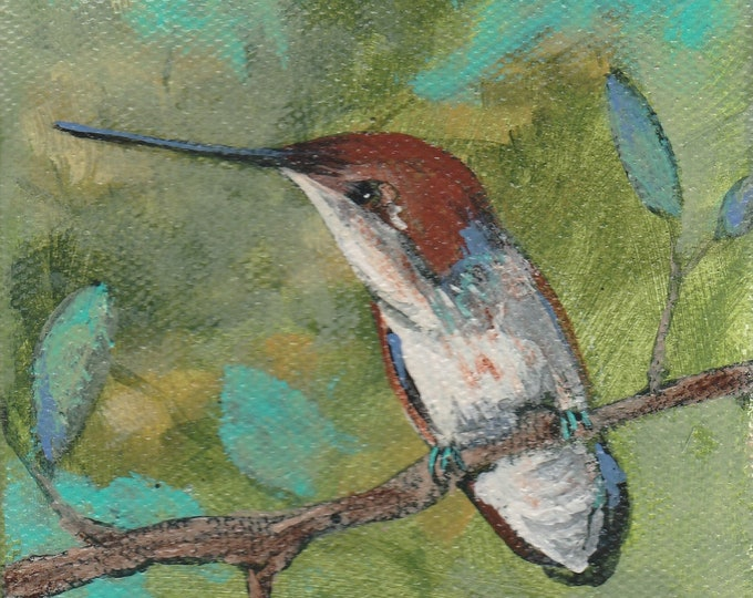 Sweet hummingbird blank greeting card