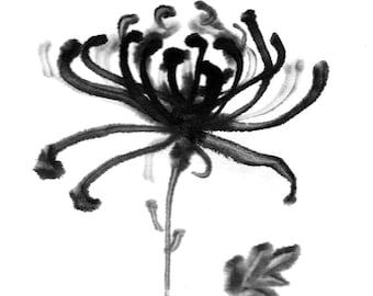 Chrysanthemum Ink painting original