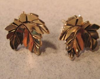 14 kt Gold Leaf Earrings on 14kt Gold Posts    e270