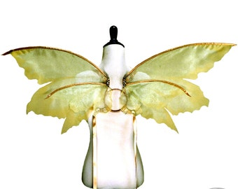 Lina No. 24, Medium Organza Fairy Wings in Pale Green and Gold - Strapless Convertible