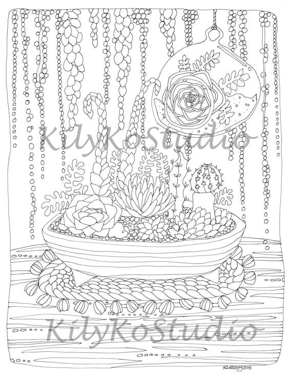 Suculentas de terrario para colorear arte sudoeste de página | Etsy