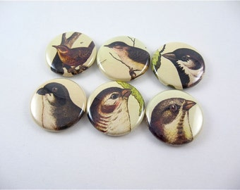 Six fridge magnet set / 1 Inch button magnets / brown birds 1174