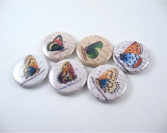 Butterfly Magnets 6 one inch fridge magnets magnabilities 1138