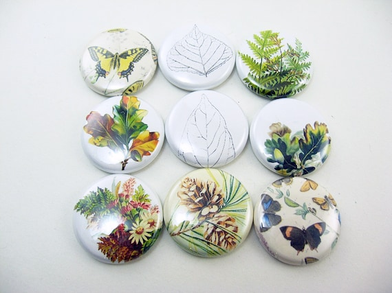 organize a kitchen 9 fridge magnet set nature leaf butterfly home amp living etsy 1239